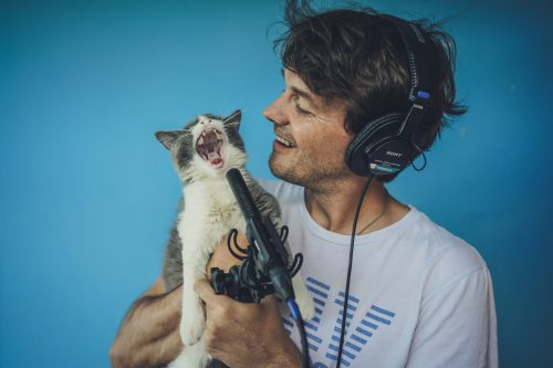 Playlist per animali domestici